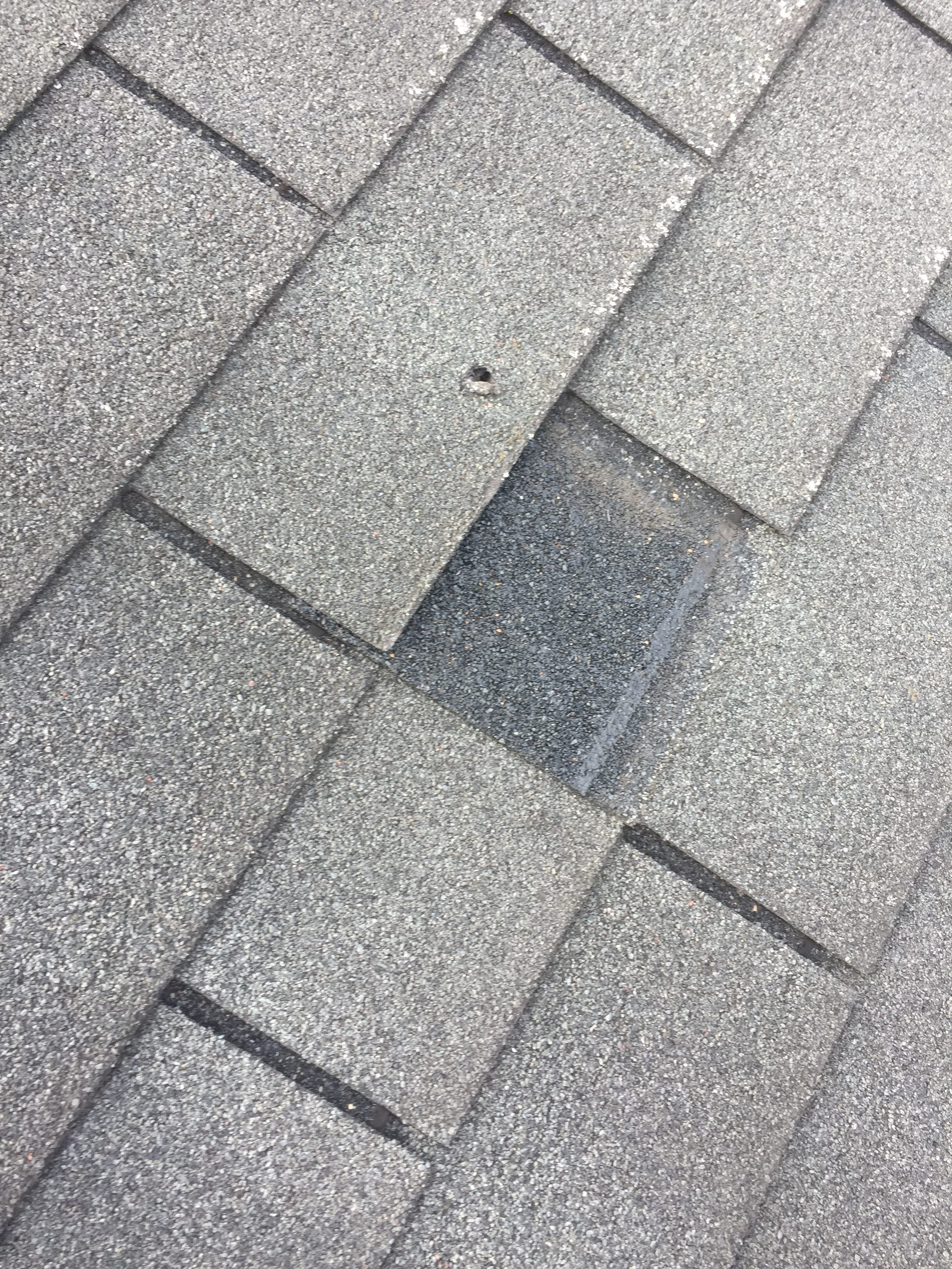 Shingle Roofs Welte Roofing
